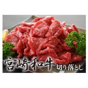 食べ過ぎ注意宮崎県産黒毛和牛切落し(焼肉)