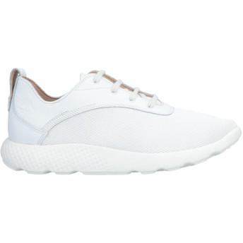 《期間限定セール開催中!》TIMBERLAND メンズ スニーカー&テニスシューズ(ローカット) ホワイト 7.5 紡績繊維 / 革