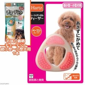 ハーツデンタル ティーザー 超小型~小型犬用おもちゃ 獣医師との共同開発+チューデント 超小型犬~小型犬用 1本