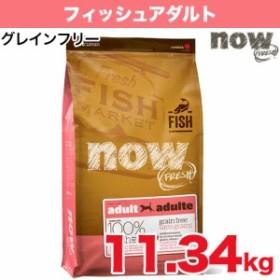 送料無料 ナウフレッシュ NOW Fresh フィッシュアダルト 11.34kg 成犬用ドライフード/アダルトメンテナンス総合栄養食