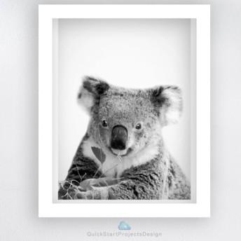 オーストラリア動物シリーズ★コアラ モダンアート部屋インテリア おしゃれ イケア 額絵 A3サイズ