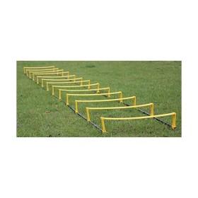 60199071370ca トレーニングラダー 12段 俊敏性 スポーツ 練習 サッカー 陸上 筋トレ TEC-SUPO01D-