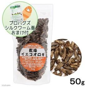 乾燥イエコオロギ 50g(約600〜650匹入り) プロバグズシルクワーム蚕15gおまけ付き