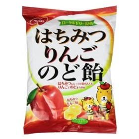 【メール便発送可能!】はちみつりんごのど飴 110g 【ノーベル製菓】