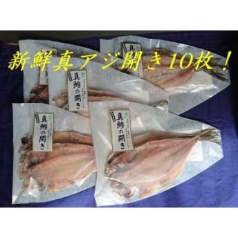 松浦で水揚げされた真アジ開き2枚入り×5袋