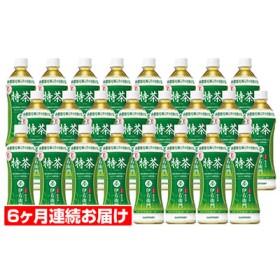 【6ヶ月定期便】サントリー緑茶 伊右衛門 特茶(特定保健用食品)500ml×24本