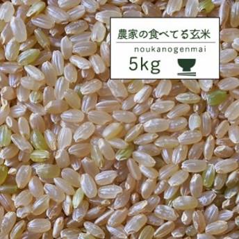 米 5kg 送料無料 玄米食 調整済 【30年産 農家の食べているおいしい玄米5kg】オリジナル 5キロ 玄米 安い 人気(沖縄配送不可)