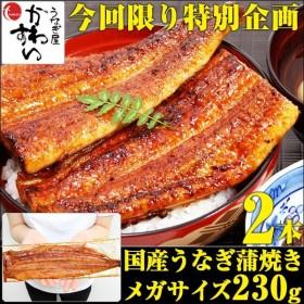 ギフト 国産 うなぎ 蒲焼き メガサイズ 230-249g 2本セット(ウナギ 鰻 送料無料)