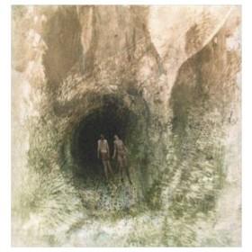 輸入盤 BEAK> / COUPLE IN A HOLE ORIGINAL SOUNDTRACK [CD]