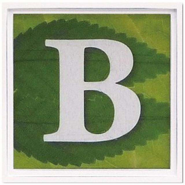 ユーパワー アルファベット アートフレーム グリーン B AL-01202-B