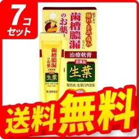 生葉口内塗薬 20g 7個セット  第3類医薬品