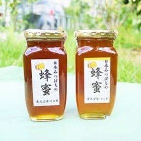 日本蜜蜂のハチミツ500g瓶2個 Aセット