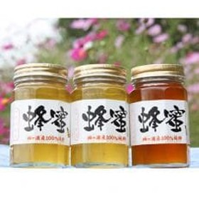 房総里山のかわの養蜂はちみつ 500g瓶 3本セット