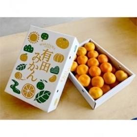 【まごころ手選別】和歌山の有田みかん(極早生) 化粧箱入り約5kg2Sサイズ