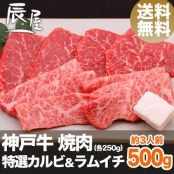 神戸牛 焼肉 セット 特選 カルビ & ラムイチ 500g(約3人前) 送料無料  冷蔵