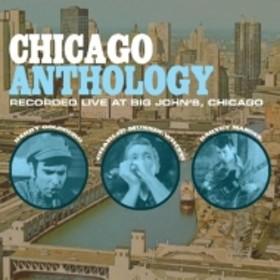 Barry Goldberg / Harvey Mandel / Chrlie Musselwhite/Chicago Anthology