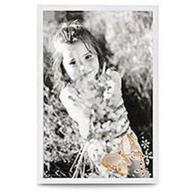 スワロフスキー Swarovski バタフライ フォトフレーム Butterfly Picture Frame 888452 写真立て