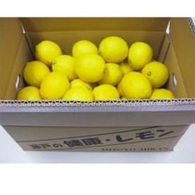 三豊市産 瀬戸内レモン約5kg(30~40個前後)