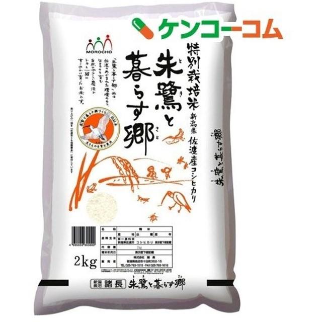 平成30年度産 佐渡産コシヒカリ 特別栽培米 ( 2kg )