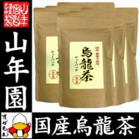 【国産 無農薬 100%】烏龍茶 ウーロン茶 ティーパック 2.5g×24パック×6袋セット 無添加 送料無料 大分県産 ティーバッグ 国産 送料無料