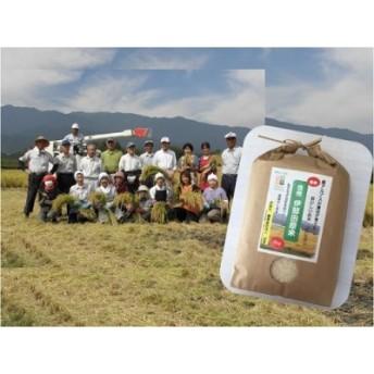 信州伊那 田原米 コシヒカリ 5kg×1袋(米・こめ・コメ)