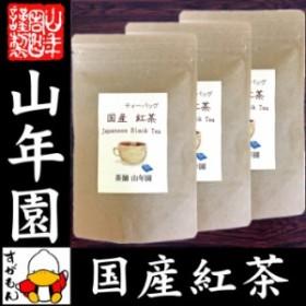 【国産 100%】巣鴨のお茶屋さんの紅茶 2g×15パック×3袋セット ティーパック ティーバッグ 静岡県産 送料無料 茶葉 プチギフト 無糖 苗