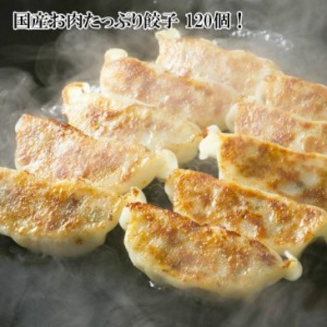 20人前の大容量!お肉たっぷり餃子 大容量120個(1680g)選べる肉餃子・ニラ餃子