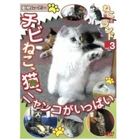 ねこ(猫)ざ ランド3(チビねこ、猫、ニャンコがいっぱい)/ドキュメント・バラエティ