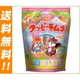 【送料無料】 カクダイ製菓  1才ごろからのクッピーラムネ  (4g×15袋)×15袋入