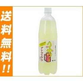 【送料無料】 博水社  ハイサワー  グレープフルーツ  1000mlペットボトル×15本入
