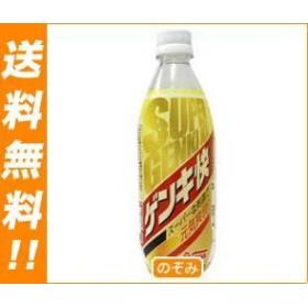 【送料無料】 サンA  スーパーゲンキ快  500mlペットボトル×24本入