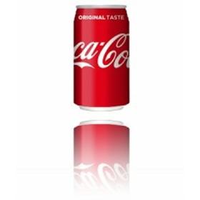 コカ・コーラ 350ml缶×24本入×(2ケース)