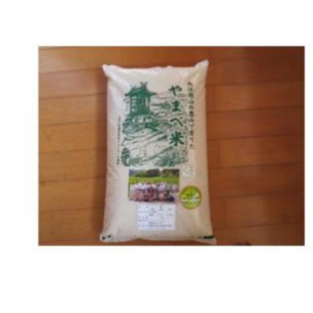 A034③ 【玄米】減農薬米(こしひかり100%)(平成30年産) 5kg