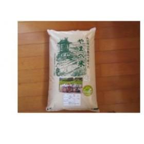 A034② 【無洗米】減農薬米(こしひかり100%)(平成30年産) 5kg