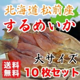するめいか 約550g 北海道松前産 50g~60g 大サイズ 10枚入り 【送料無料】