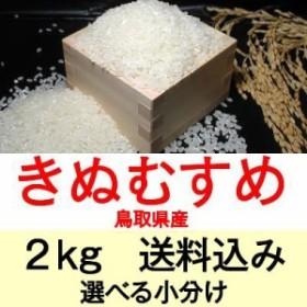 30年産 鳥取県産きぬむすめ2kg便利な選べる小分け