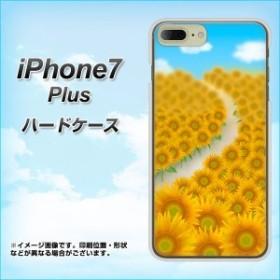 464cb7c23a iPhone7 PLUS ハードケース / カバー【VA818 運気UPひまわり 素材クリア】(アイフォン