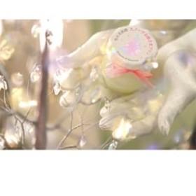 『雪の美術館』 スノーナお姫さまプリン12個セット