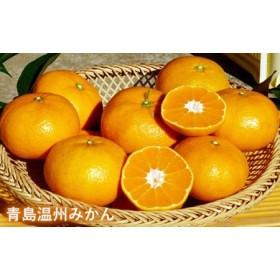 光自然農法の柑橘詰め合わせワクワクセット 柑橘 2kg以上