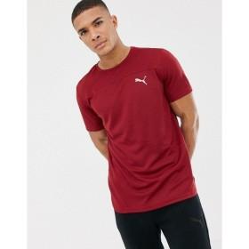 プーマ Tシャツ メンズ Puma Running Mono T-Shirt In Burgundy 517242-08 Red