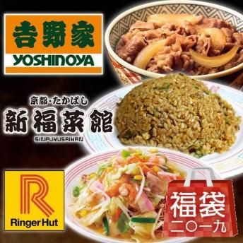 吉野家 牛丼の具 3袋・新福菜館 炒飯 3袋・リンガーハット 皿うどん 4食 10点セット