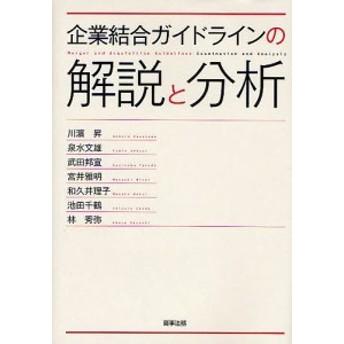 企業結合ガイドラインの解説と分析/川濱昇