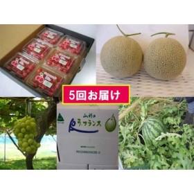 【5回お届け】山形産旬の果物定期便