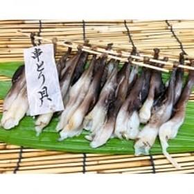 串とり貝4串【竹かご入り】