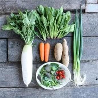 まにわの新鮮野菜セット 7~8品