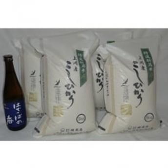 【阿賀町マンマ認定】「上川産こしひかり20kg」と「はでっぱの香720ml」セット