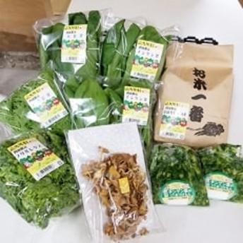 四條畷産・大阪産(おおさかもん)野菜4~6品目とお米3kgの詰め合わせ