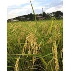 【平成30年産米】直播き 農薬不使用栽培『日本晴』玄米5kg