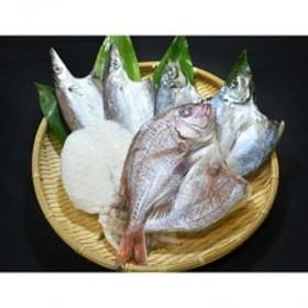 無添加・天日干し ピチピチ朝獲れ鮮魚の天日干し 6枚