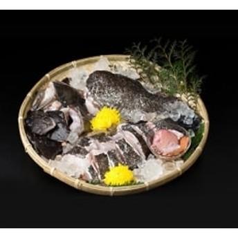 【対馬の味便り】高級魚クエの鍋用切り身 Sセット